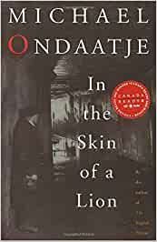 in the skin of a lion review