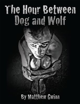 between a wolf and a dog review