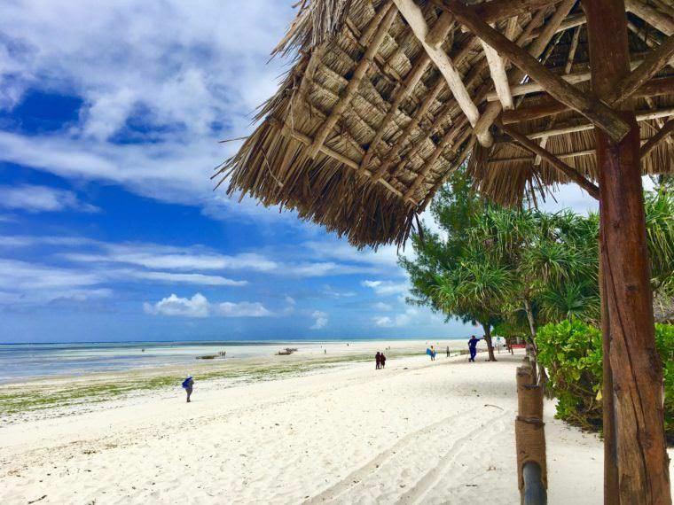 ocean paradise resort zanzibar reviews
