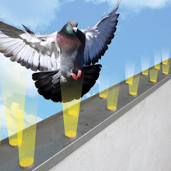 bird barrier optical gel reviews