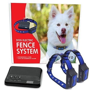 best electric dog fence reviews