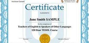 best online tefl course reviews