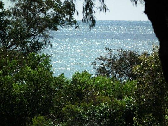 broadwater beach resort busselton review