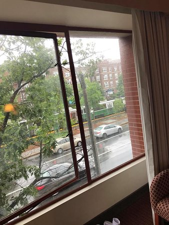 holiday inn boston brookline reviews