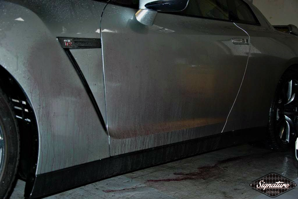opti coat paint protection review