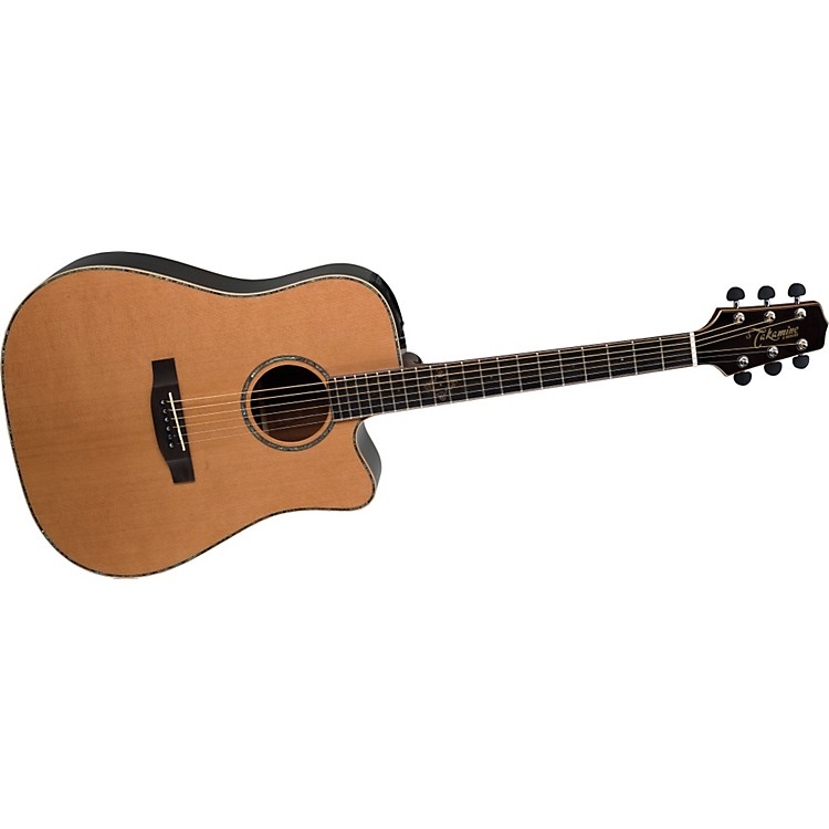 takamine g series acoustic guitar review